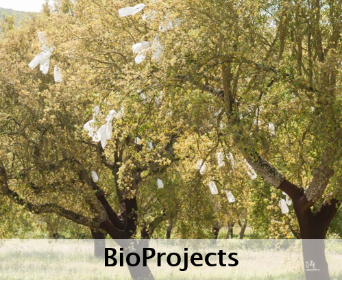 BioProjects
